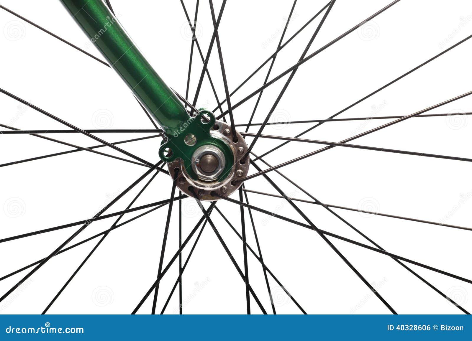 Rayos de la bicicleta