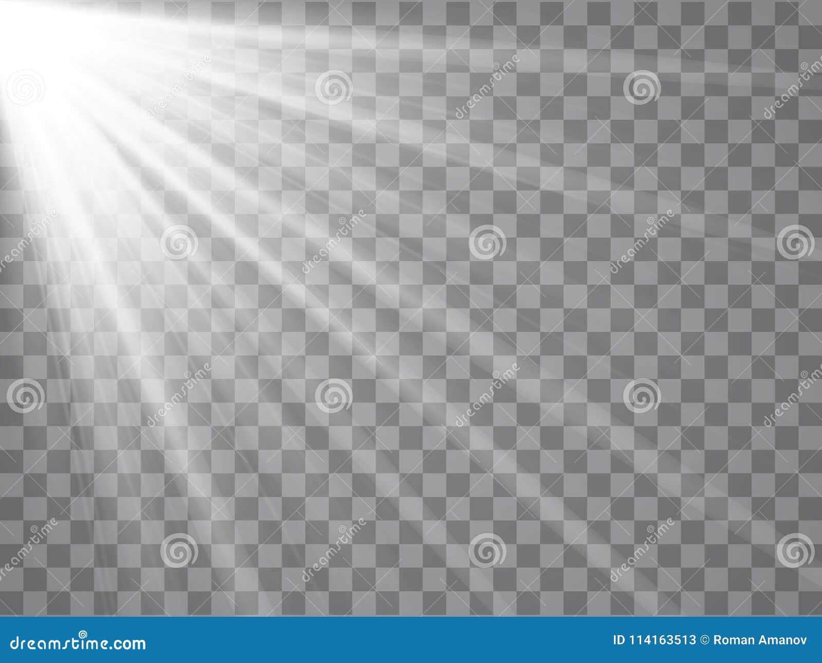 Rayos del proyector con los haces en fondo transparente Vector ligero de destello