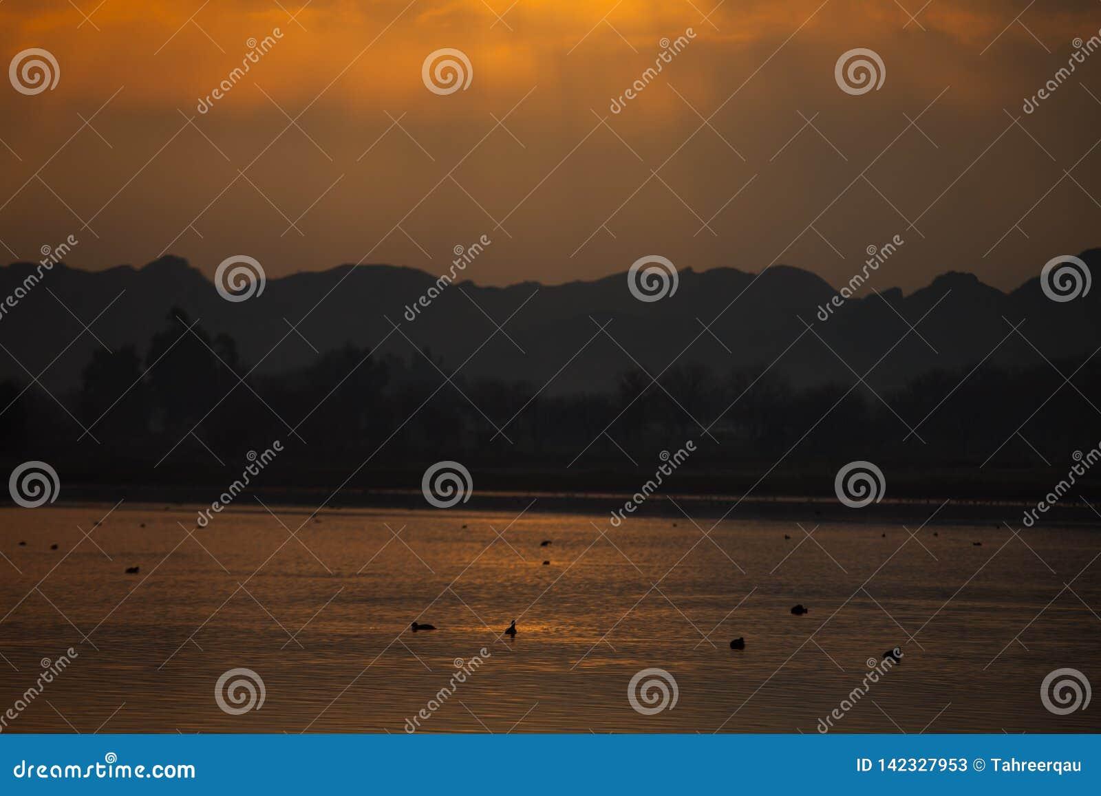Rayos del sol en el lago en la puesta del sol