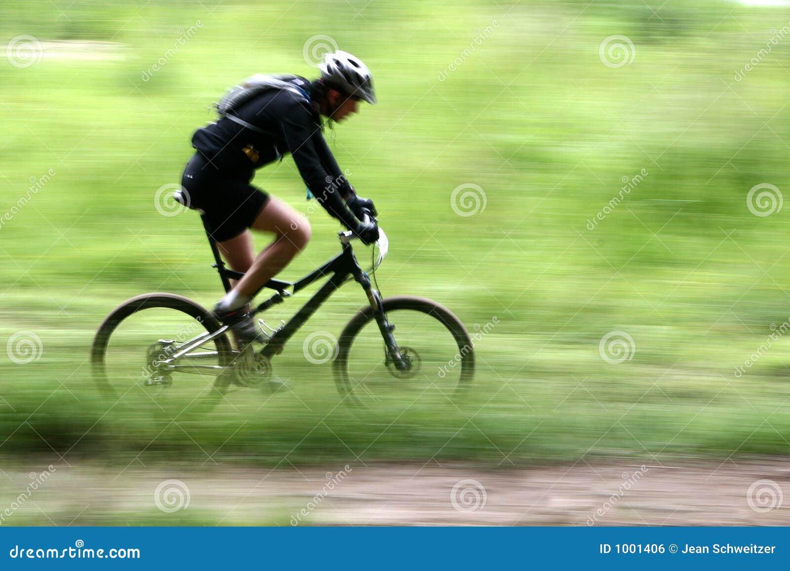 Raza de la bici
