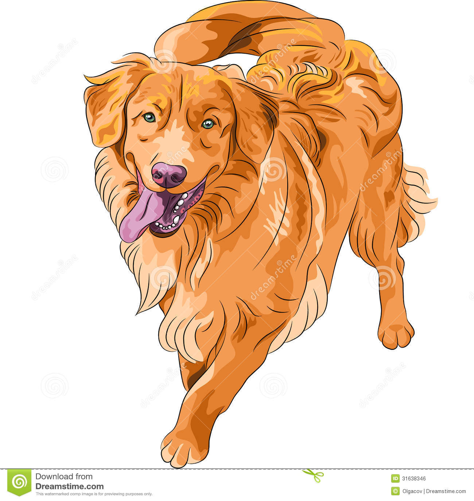 Raza divertida hilarante Nova Scoti del perro del bosquejo del vector