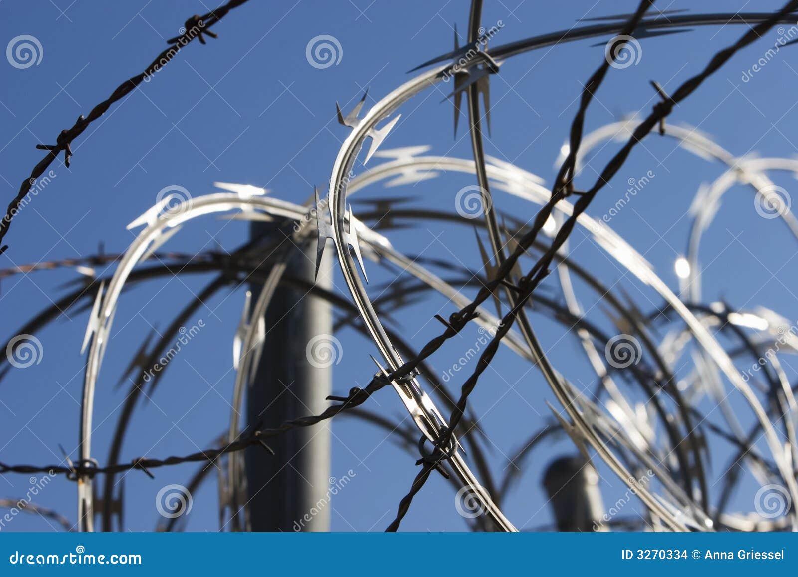Razor Wire stock photo. Image of sharp, jail, pointed - 3270334