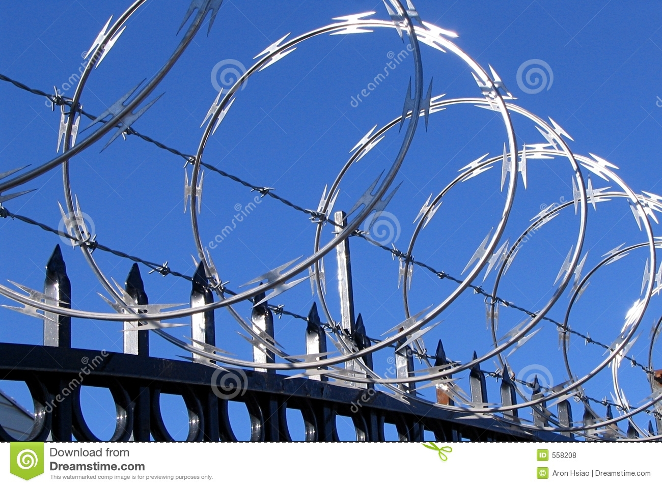 Enchanting Razor Wire Injury Crest - Electrical and Wiring Diagram ...