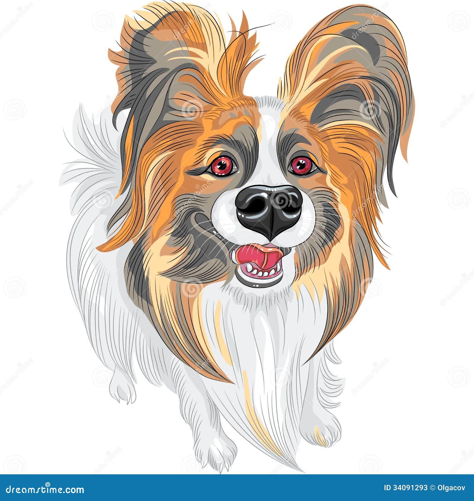 Cane rosso e nero di Papillon sorridente sveglio con le orecchie irsute  lunghe 9e54169871b7