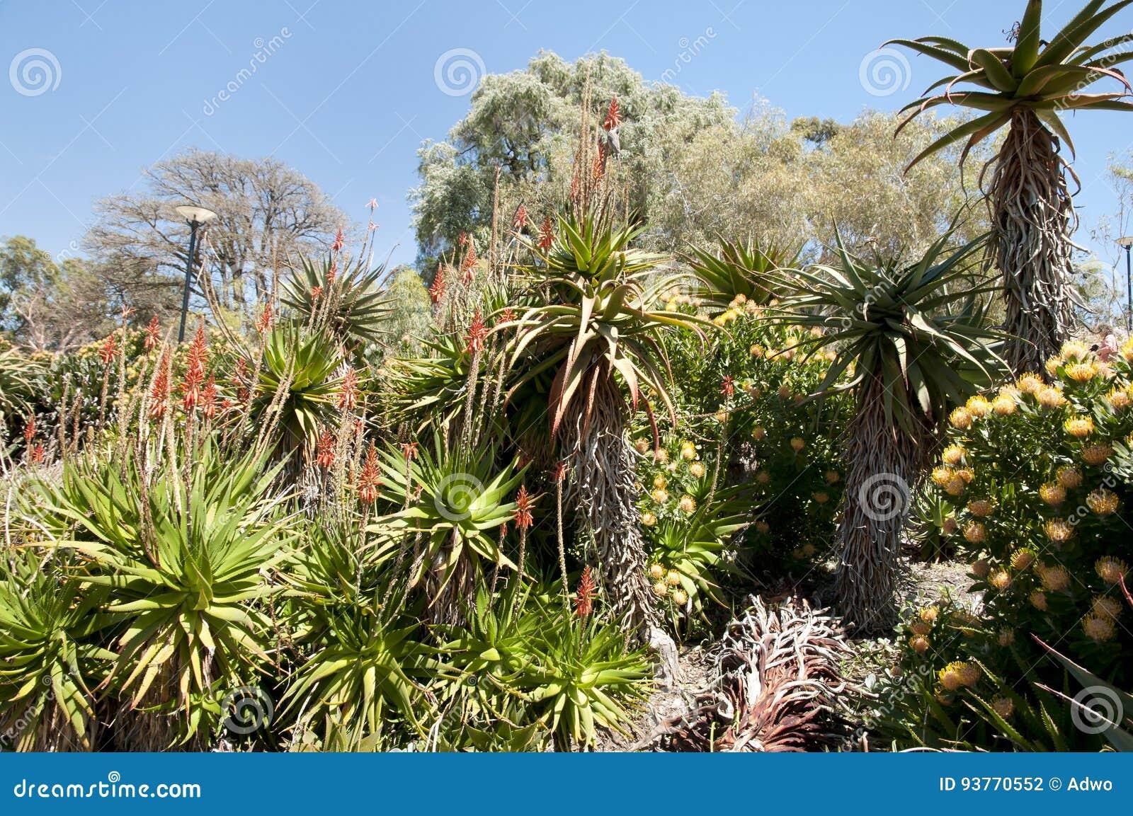 Re Park - Perth - Australia