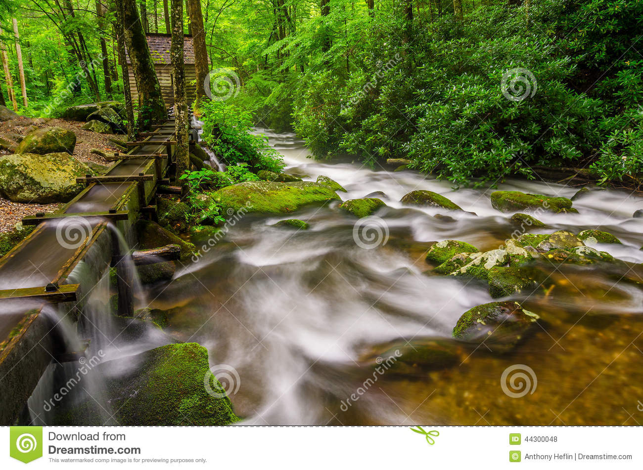 Reagans Mill Roaring Fork Great Smoky Mountains Stock