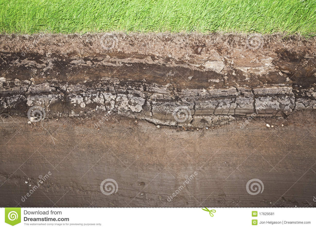 Real grass and several underground soil layers stock image for Earth soil layers