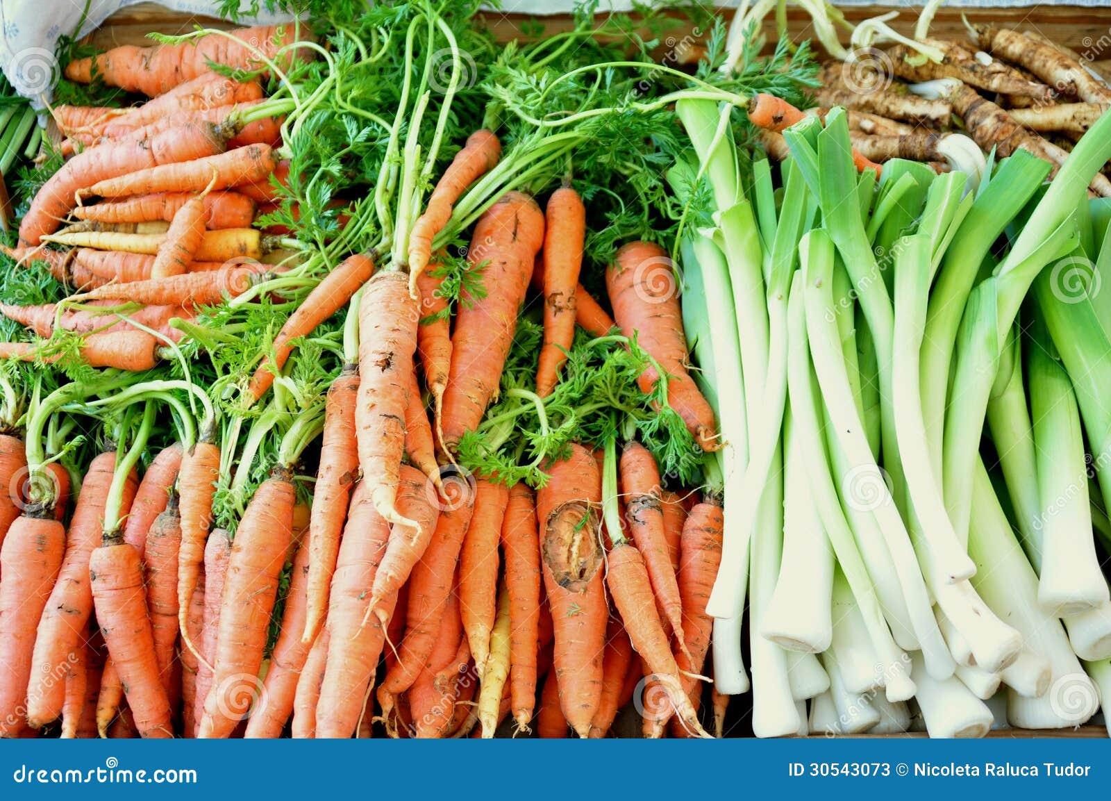 Growing Healthy Organic Food