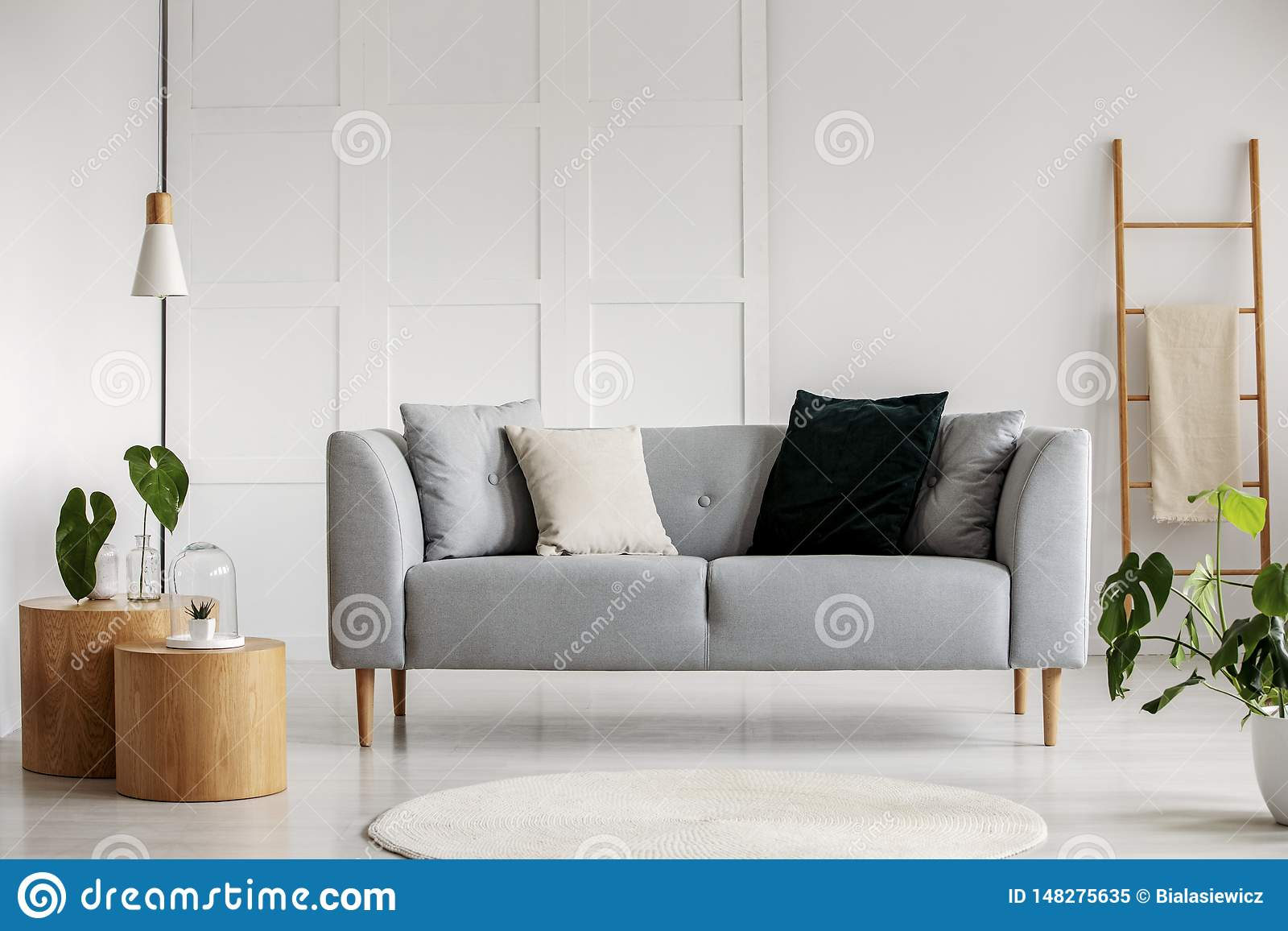 Photo of modern living room with gray sofa