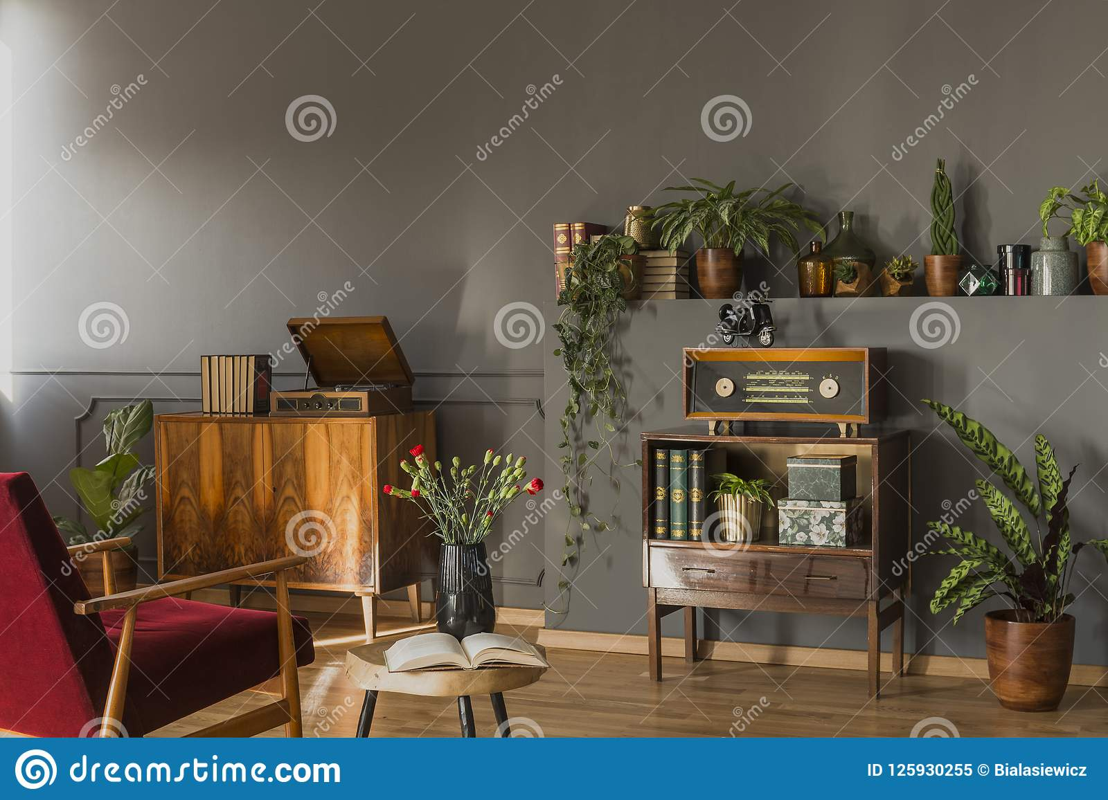 Real photo of a red armchair standing in front to a small cupboard with books and radio, shelf with plants and shelf with