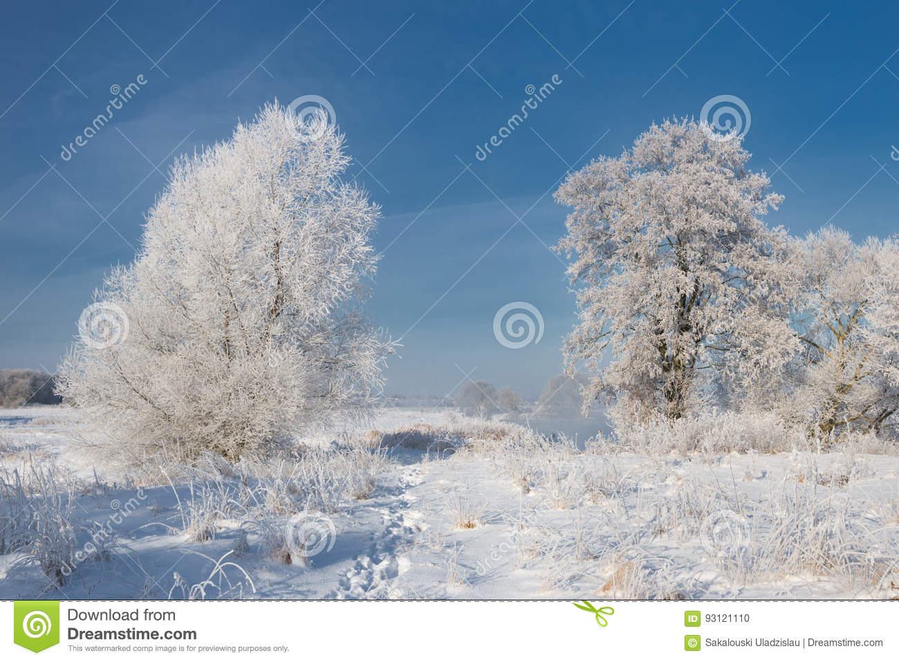 A Real Russian Winter. Morning Frosty Winter Landscape With Dazzling White Snow And Hoarfrost, River And A Saturated Blue Sky.