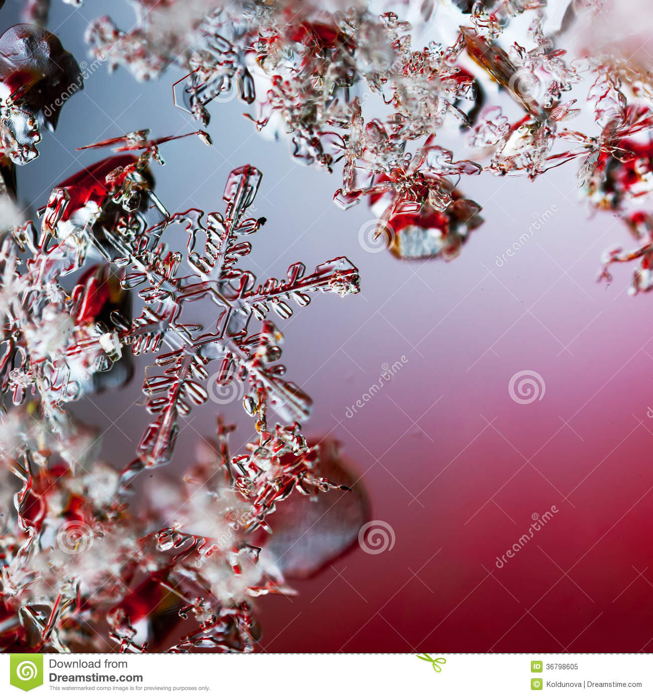 Snowflakes on glass, close-up, blue background | HD Wallpapers |Real Snowflakes Background