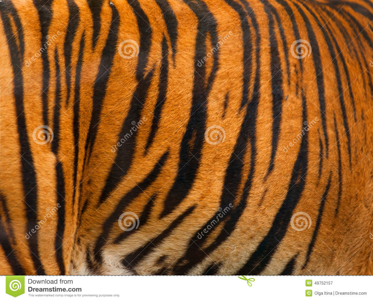 Real Tiger Fur Texture Striped Pattern Background Stock ... - photo#8