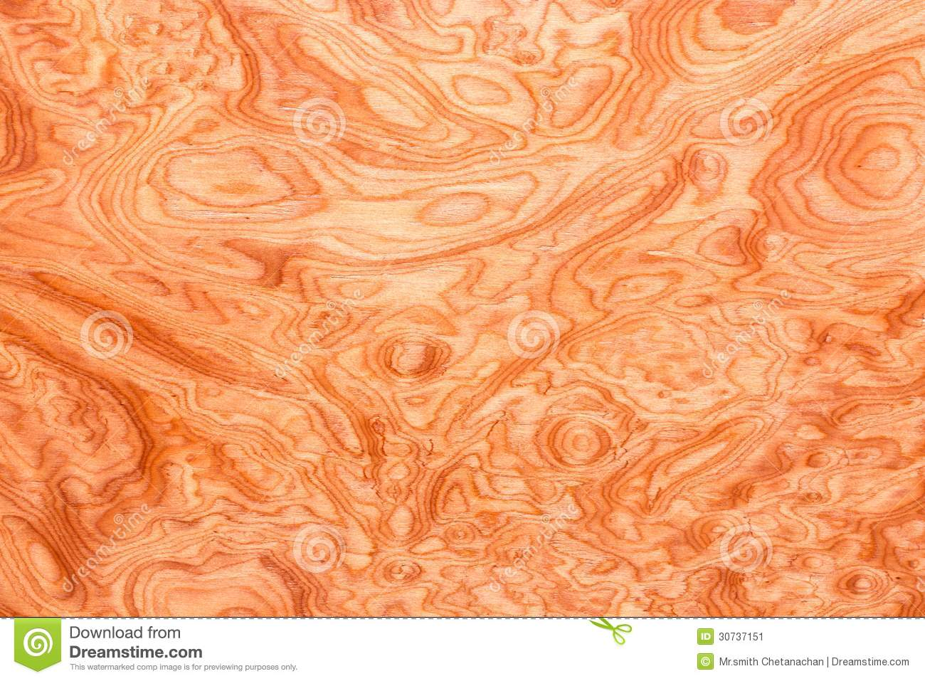 Real Wood Grain Texture Stock Image Image Of Grain Hard