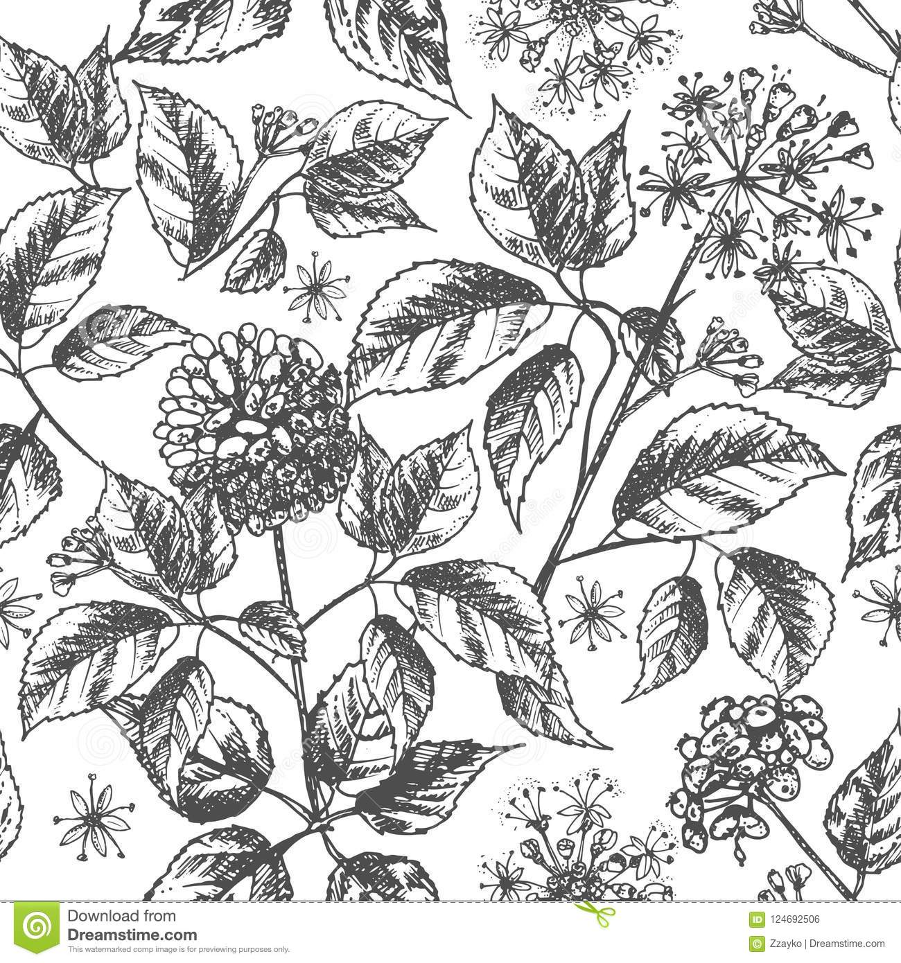 Realistic Botanical Ink Sketch Seamless Pattern With Ginseng Root