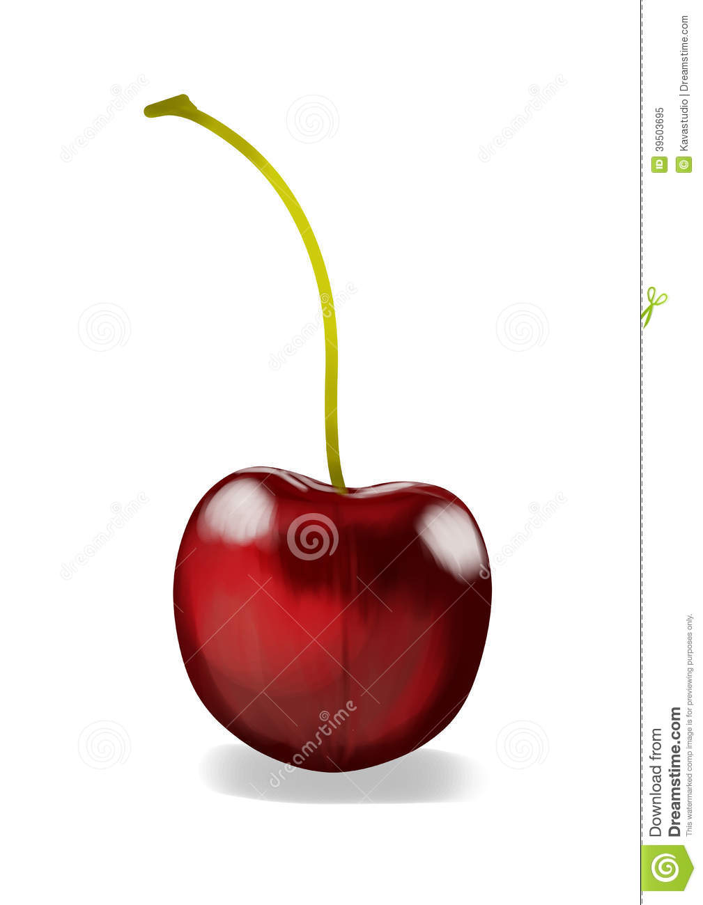 Realistic red cherry illustration, front of one fruit