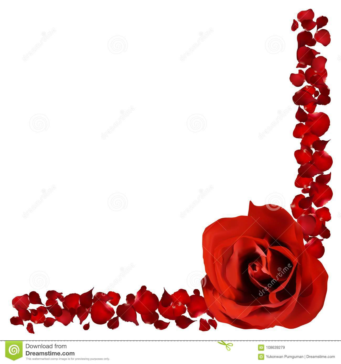 realistic red rose and petals border, flower vector illustration