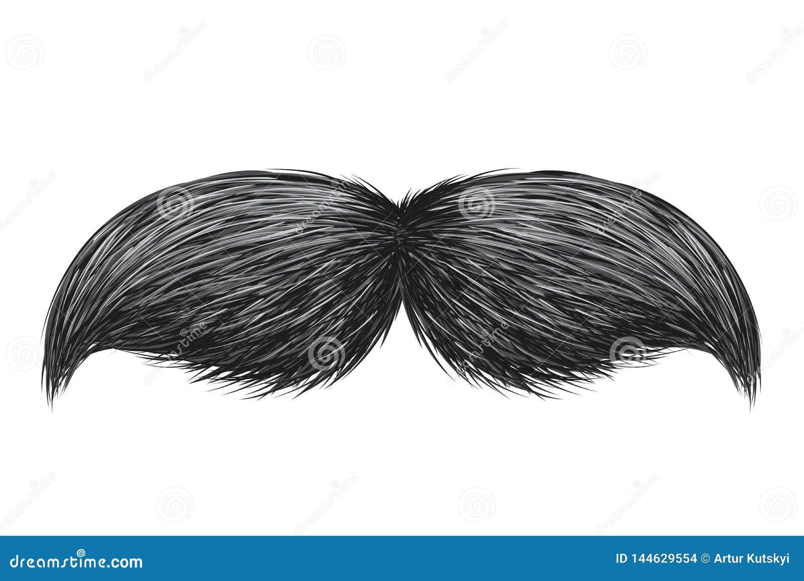 Realistic vintage classic retro mustache isolated vector illustration.