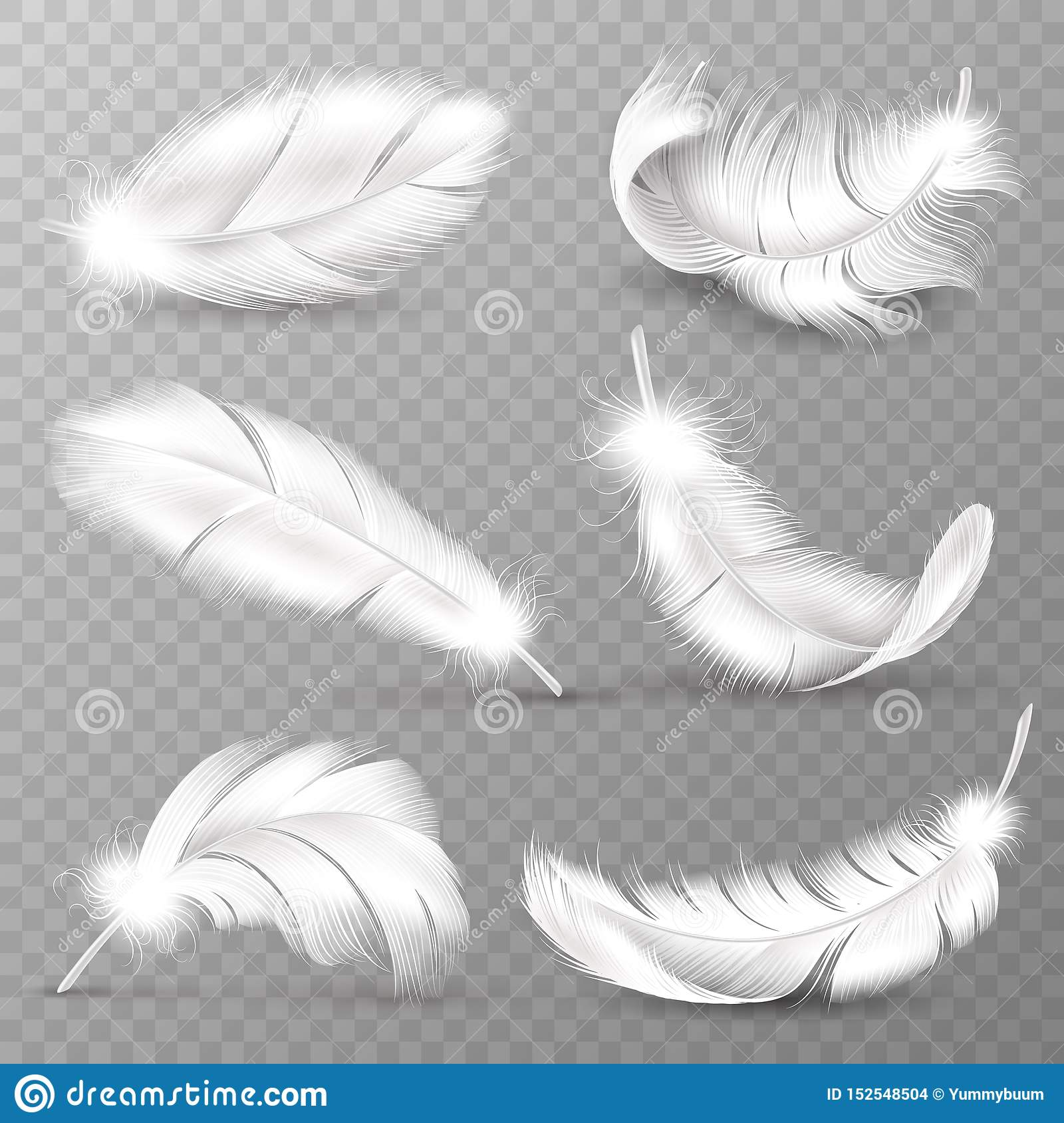 Realistic white feathers. Birds plumage, falling fluffy twirled feather, flying angel wings feathers. Realistic isolated