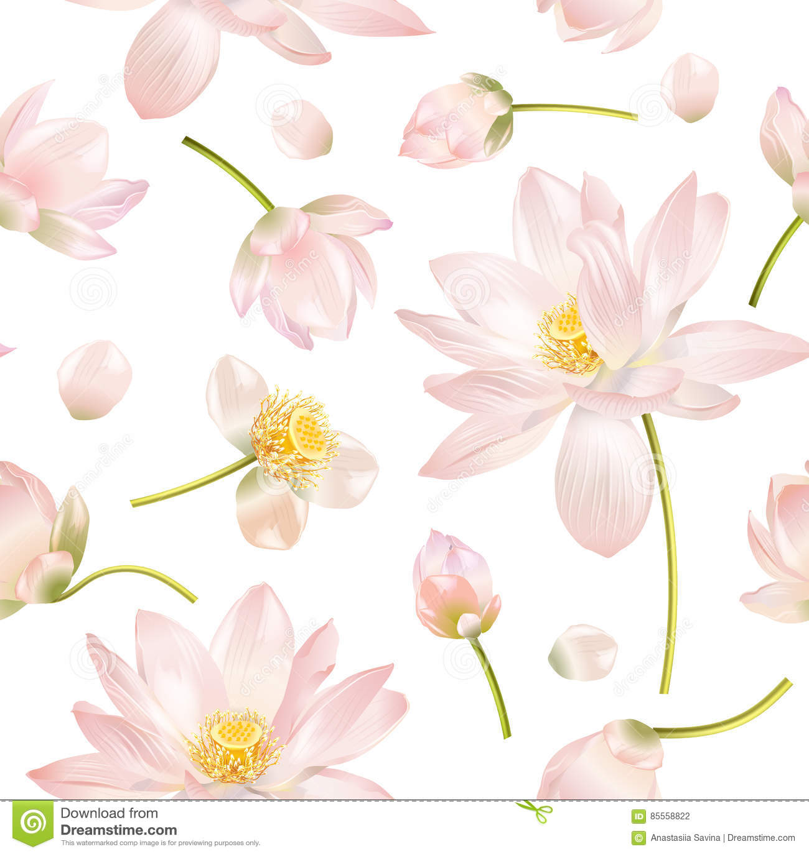Realistische Illustration Lotuss