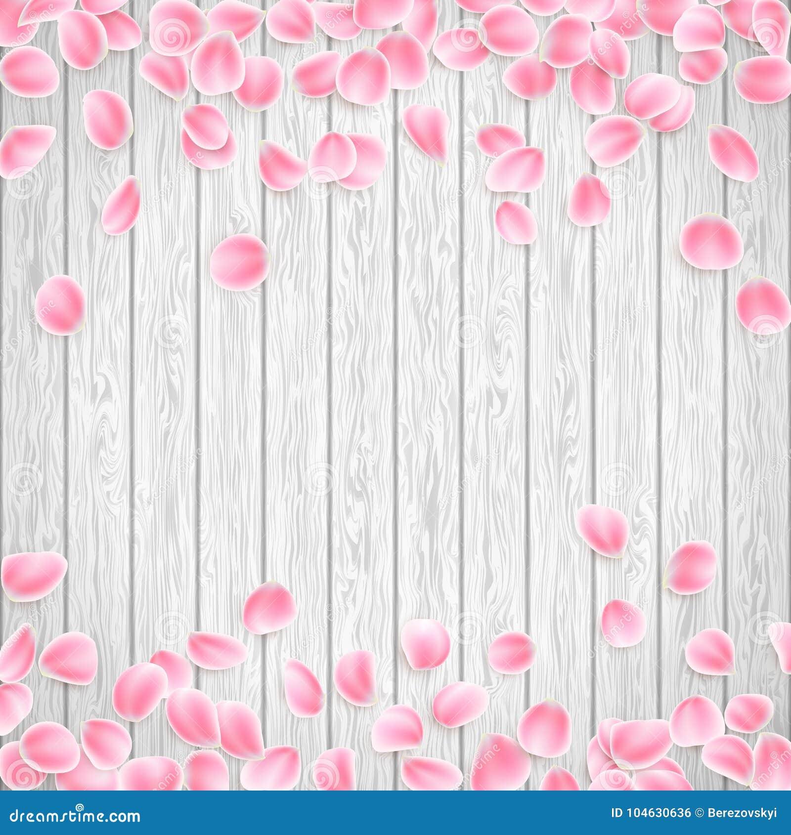 Download Realistische Sakura-bloemblaadjes Op Een Witte Houten Achtergrond EPS 10 Vector Vector Illustratie - Illustratie bestaande uit viering, roze: 104630636