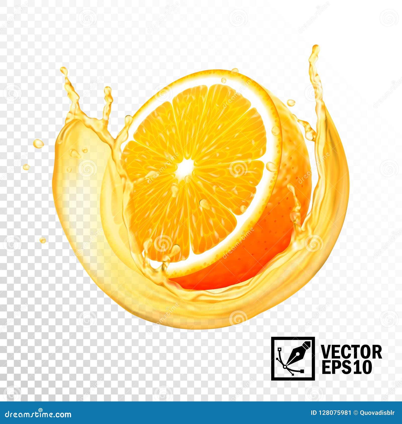 Realistisk färgstänk för vektor 3D av den orange skivan för fruktsaft Redigerbart handgjort ingrepp