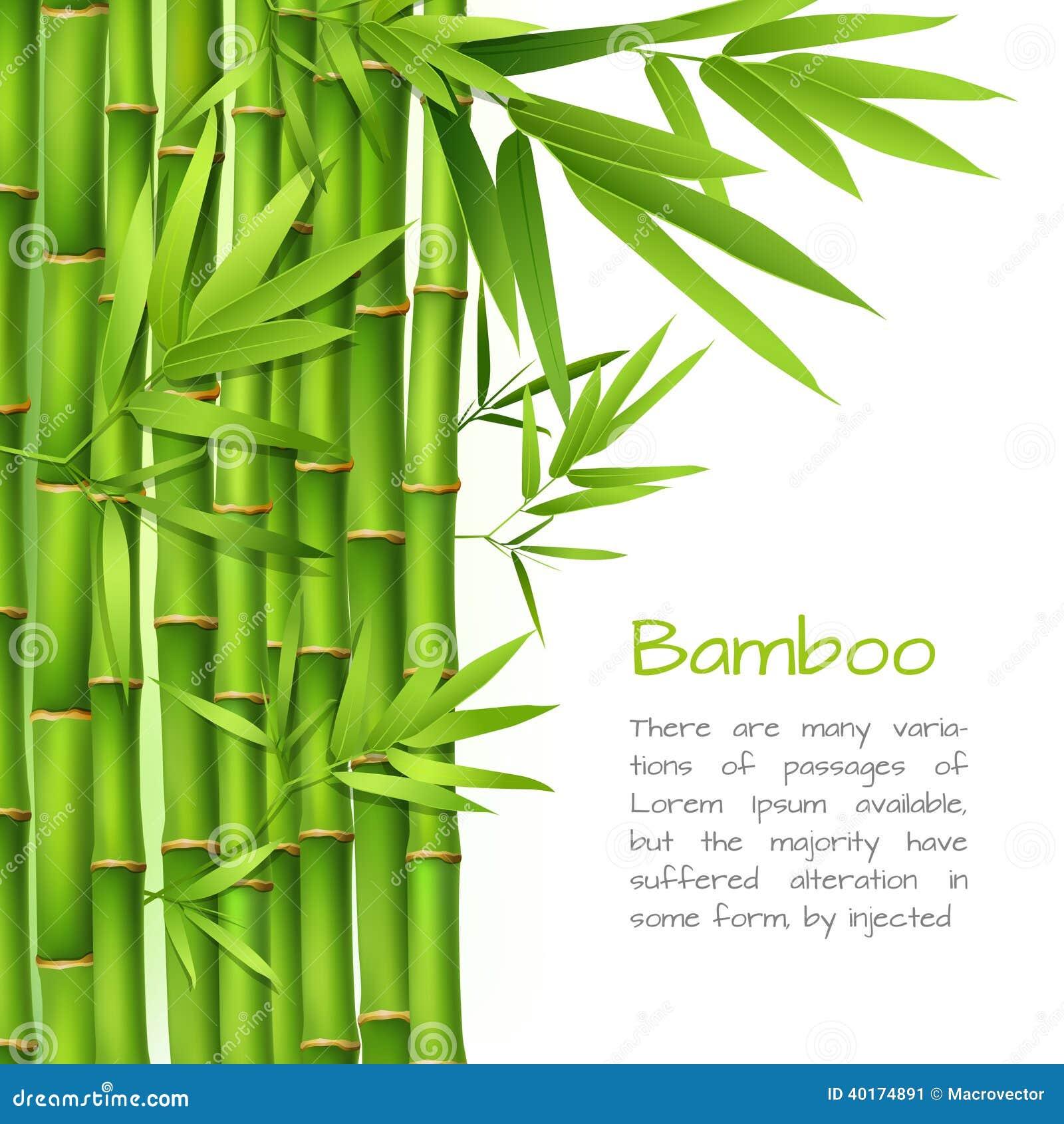 Realistyczny bambusowy tło