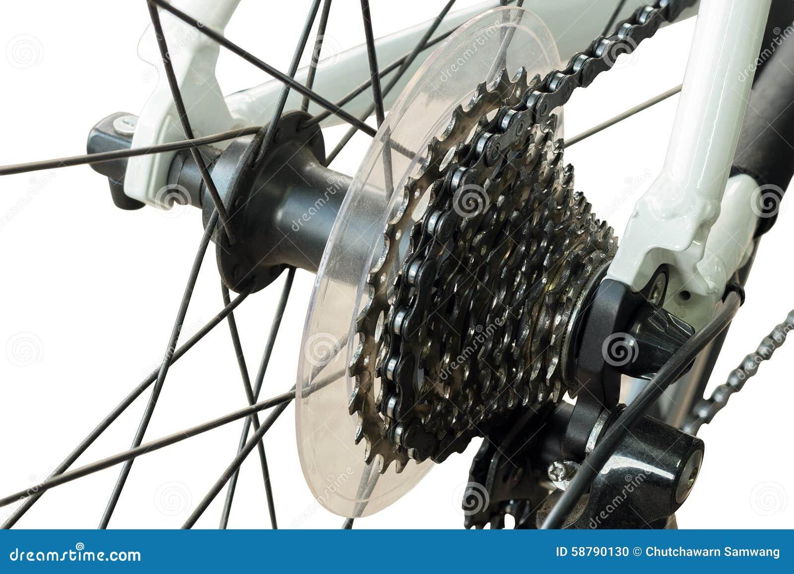 Rear Mountain Bike Cassette On The Wheel Stock Photo Image 58790130