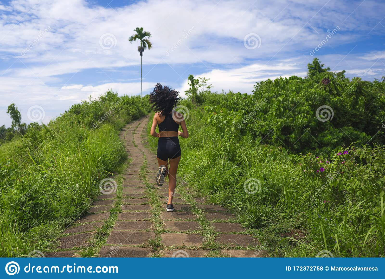 Girl With Backpack Enjoy Beautiful Landscape Back Rear