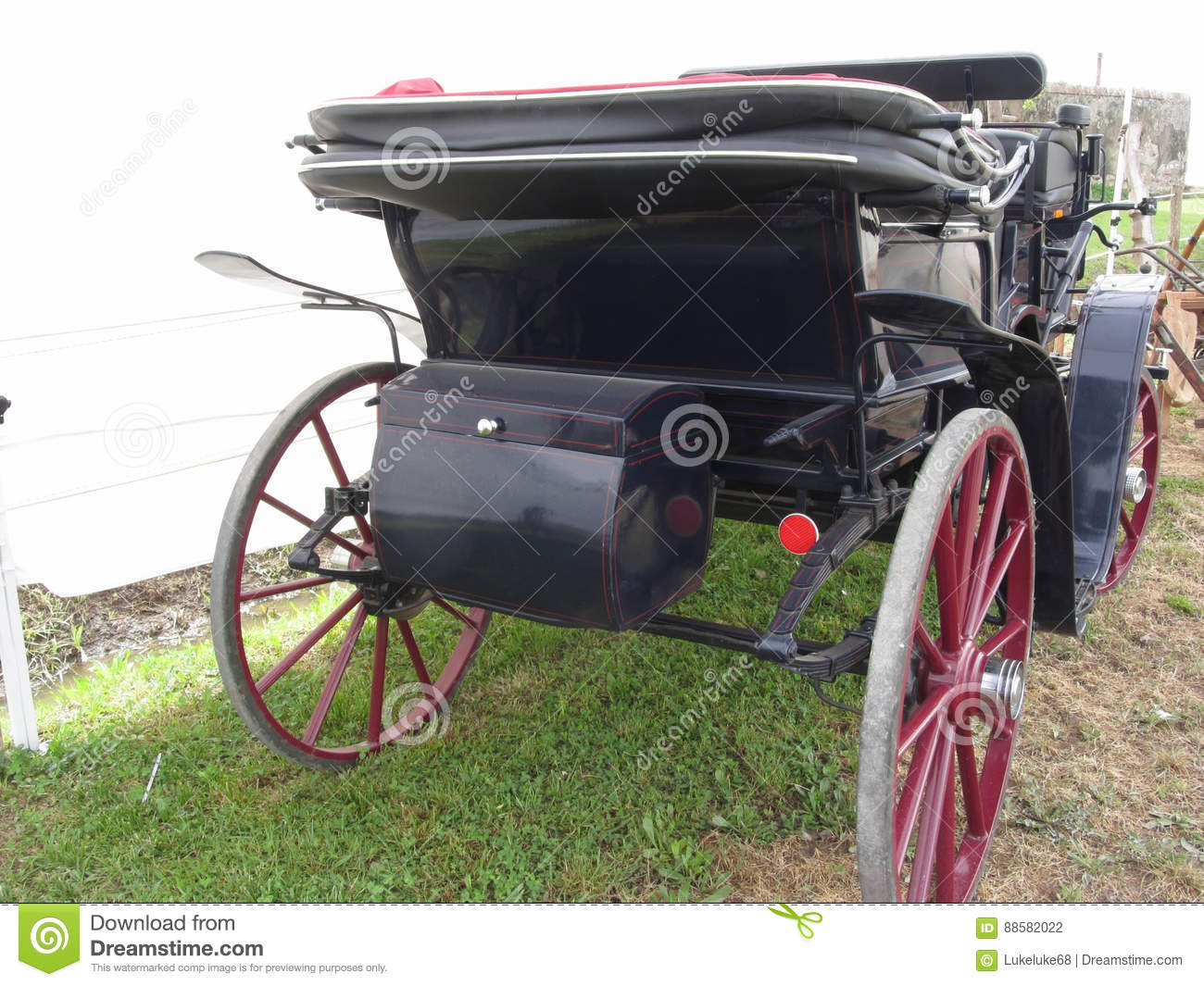 Rear view of old-fashioned horse carriage on green grass