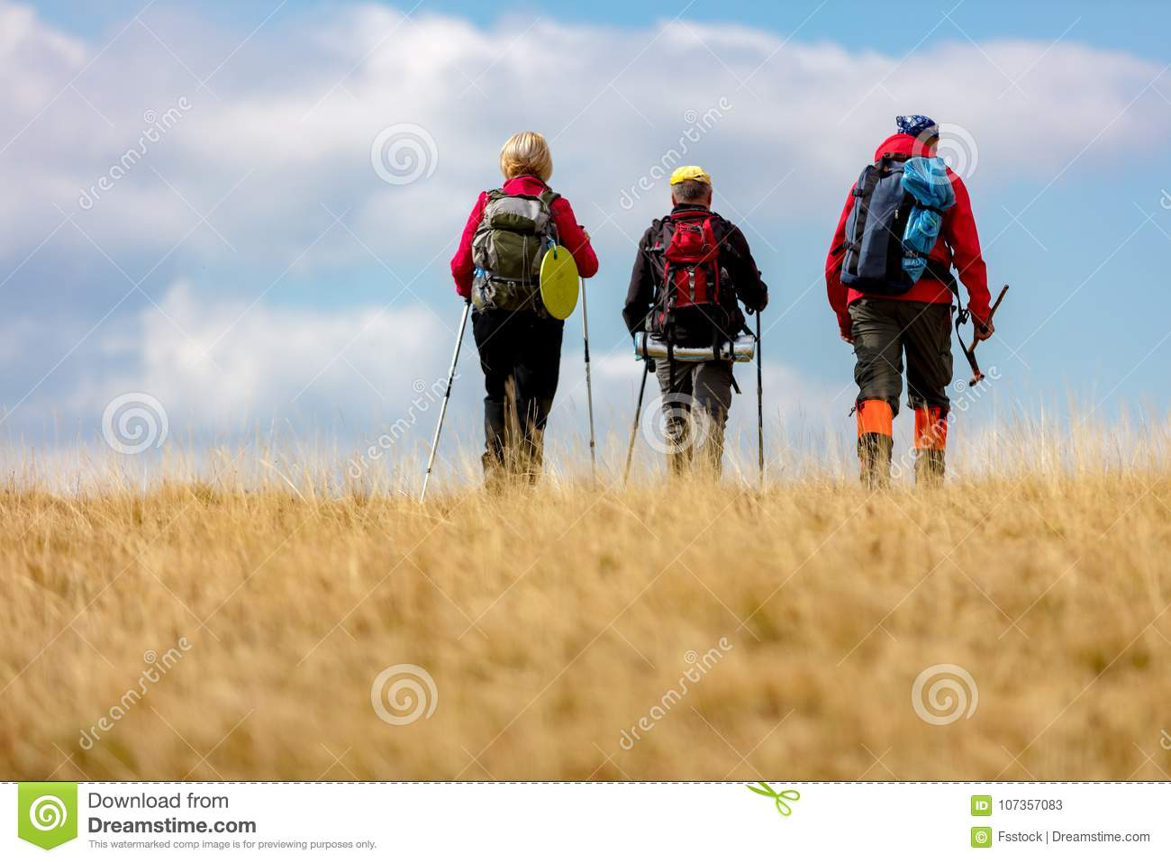 Rear view shot of young friends in countryside during summer holiday hiking. Group of hikers walking in the nature.
