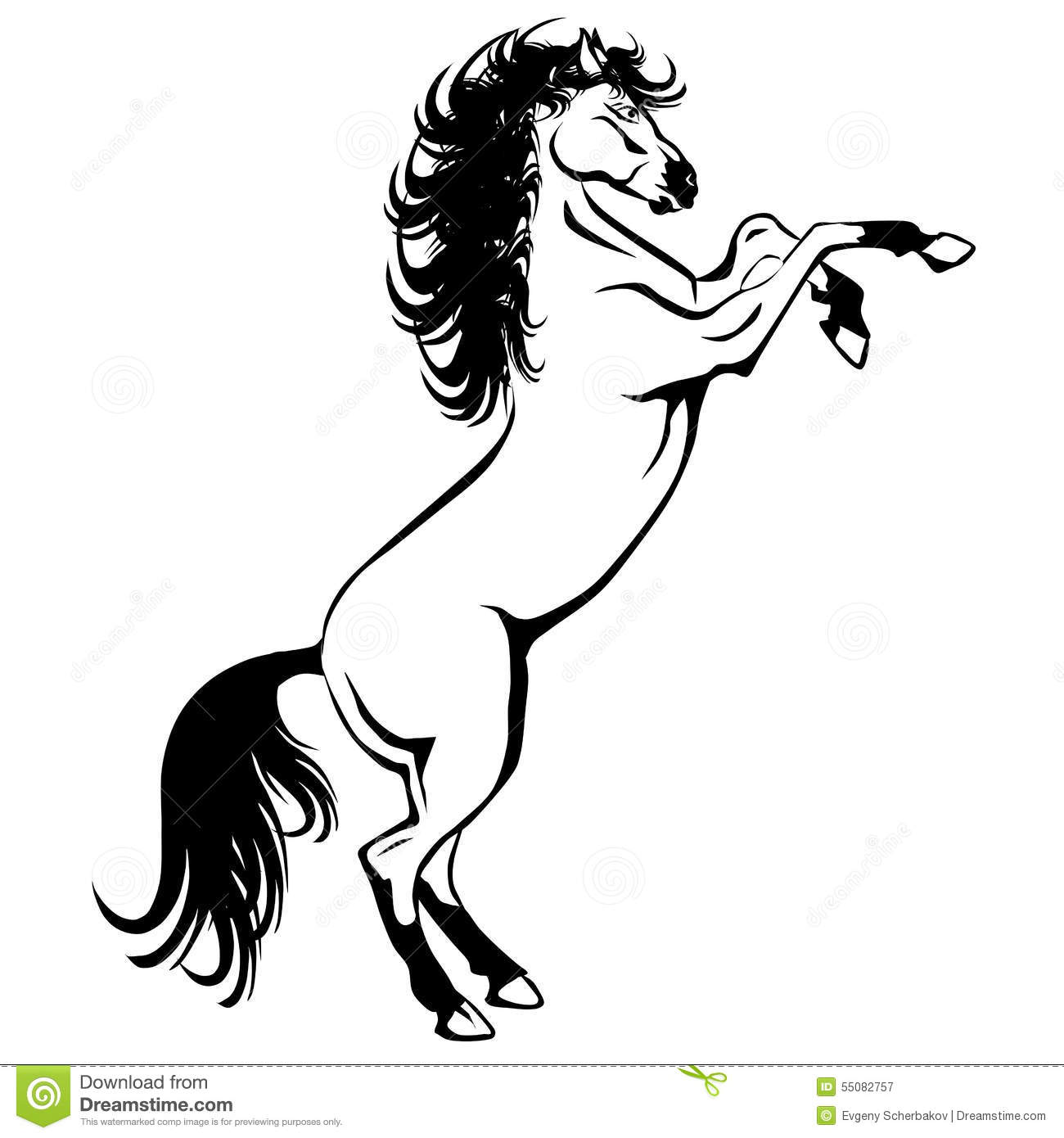 a rearing white horse without shadow stock illustration image