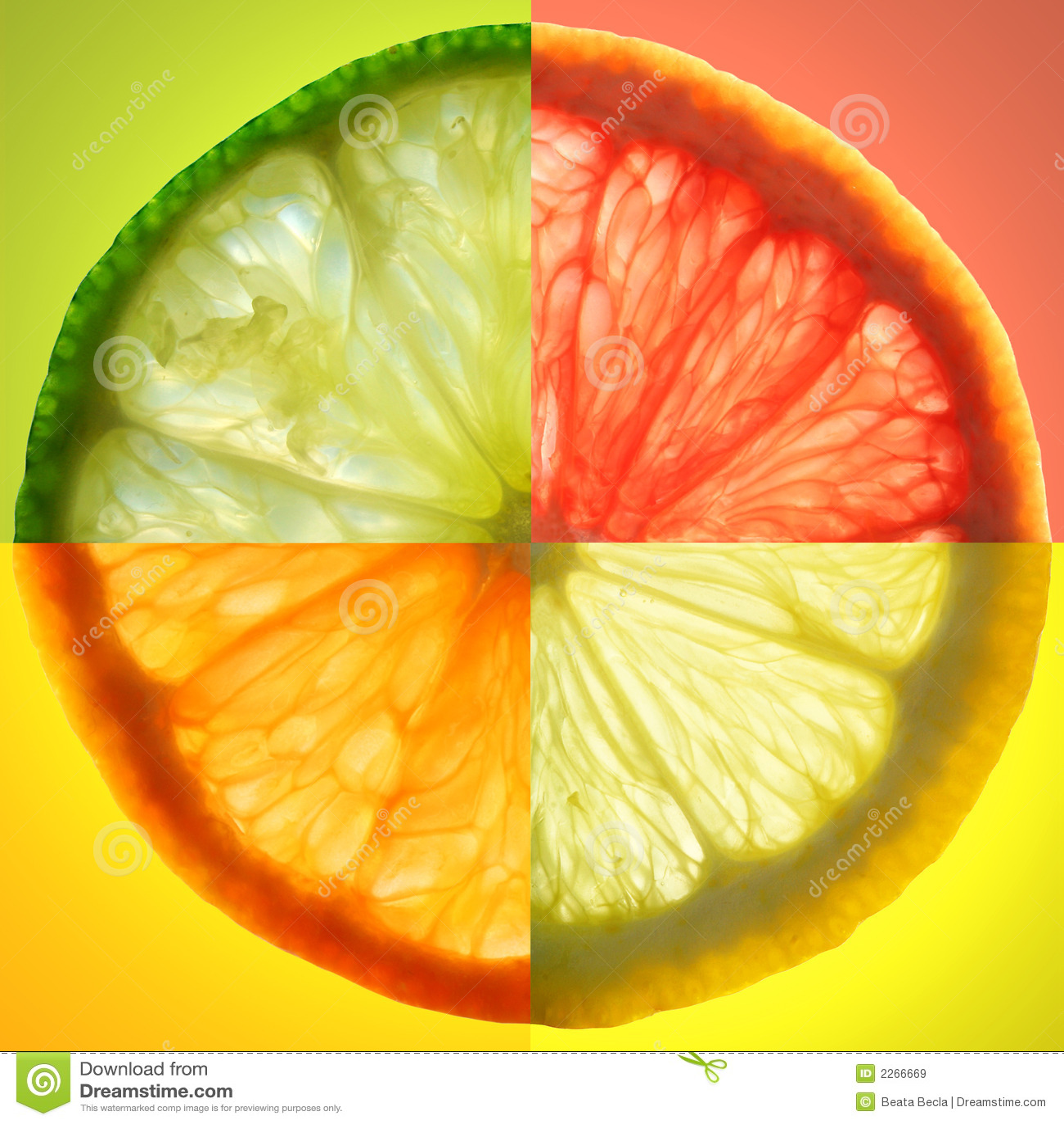 Rebanada de la fruta cítrica