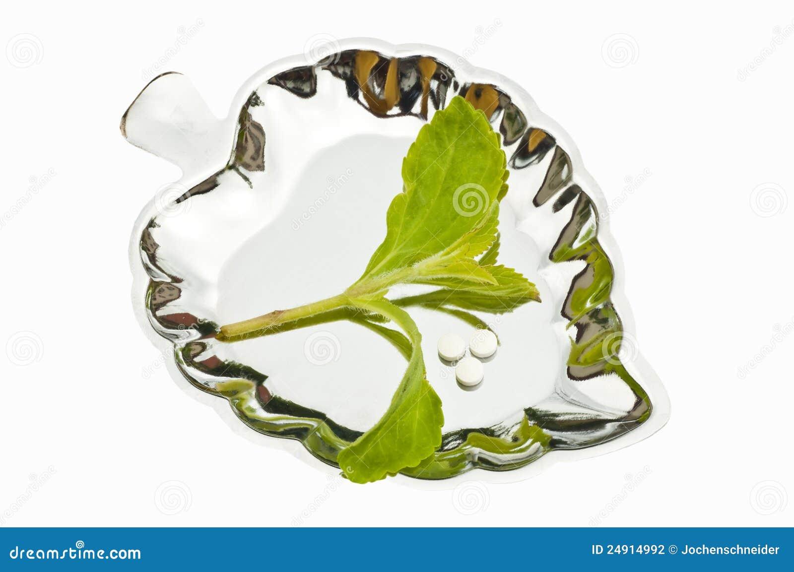 Rebaudiana do Stevia, sustentação para o açúcar, tabuletas