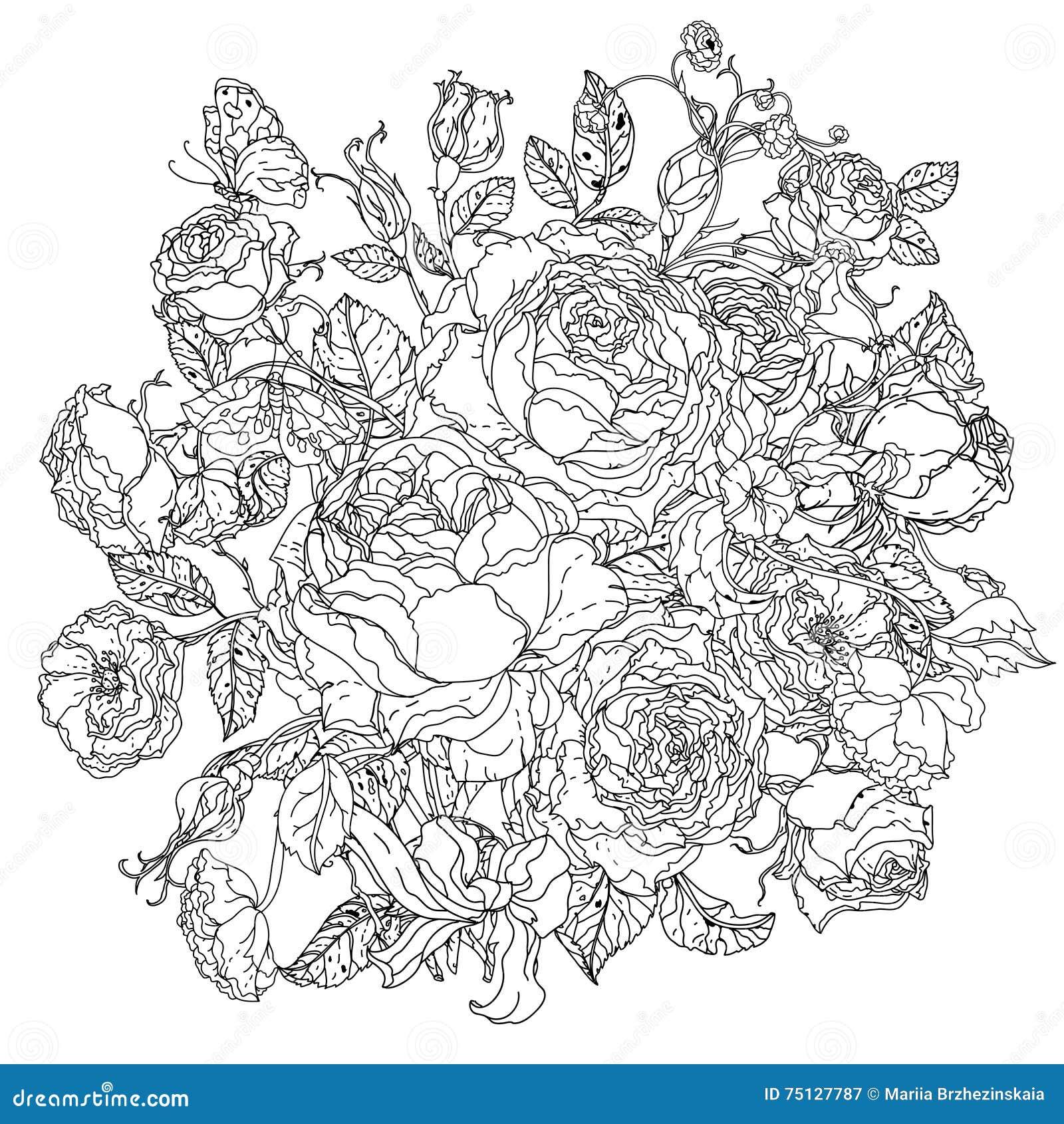 Rebecca 36 rose del fiore illustrazione vettoriale - Modello di base del fiore ...