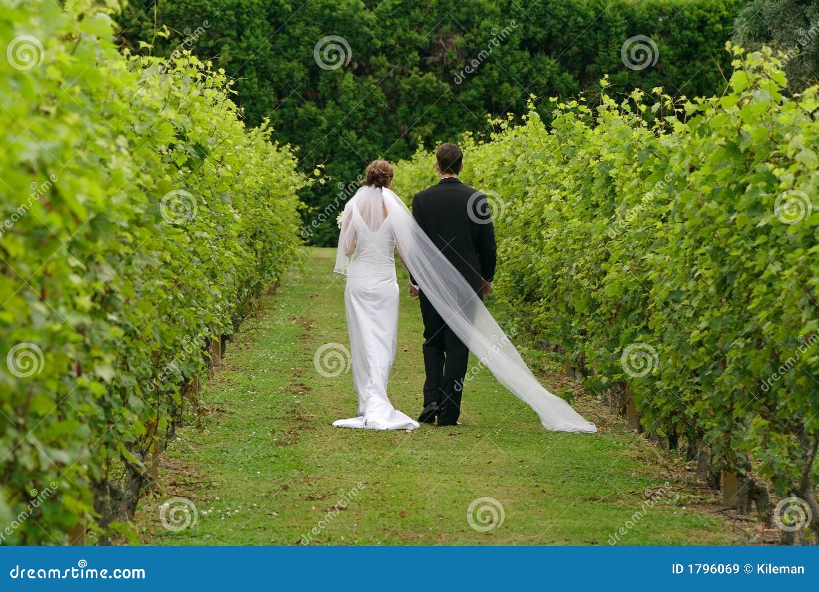 Recentemente wed le coppie