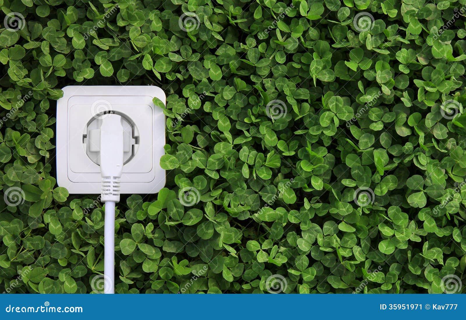 Receptáculo de la energía eléctrica en un fondo de la hierba verde