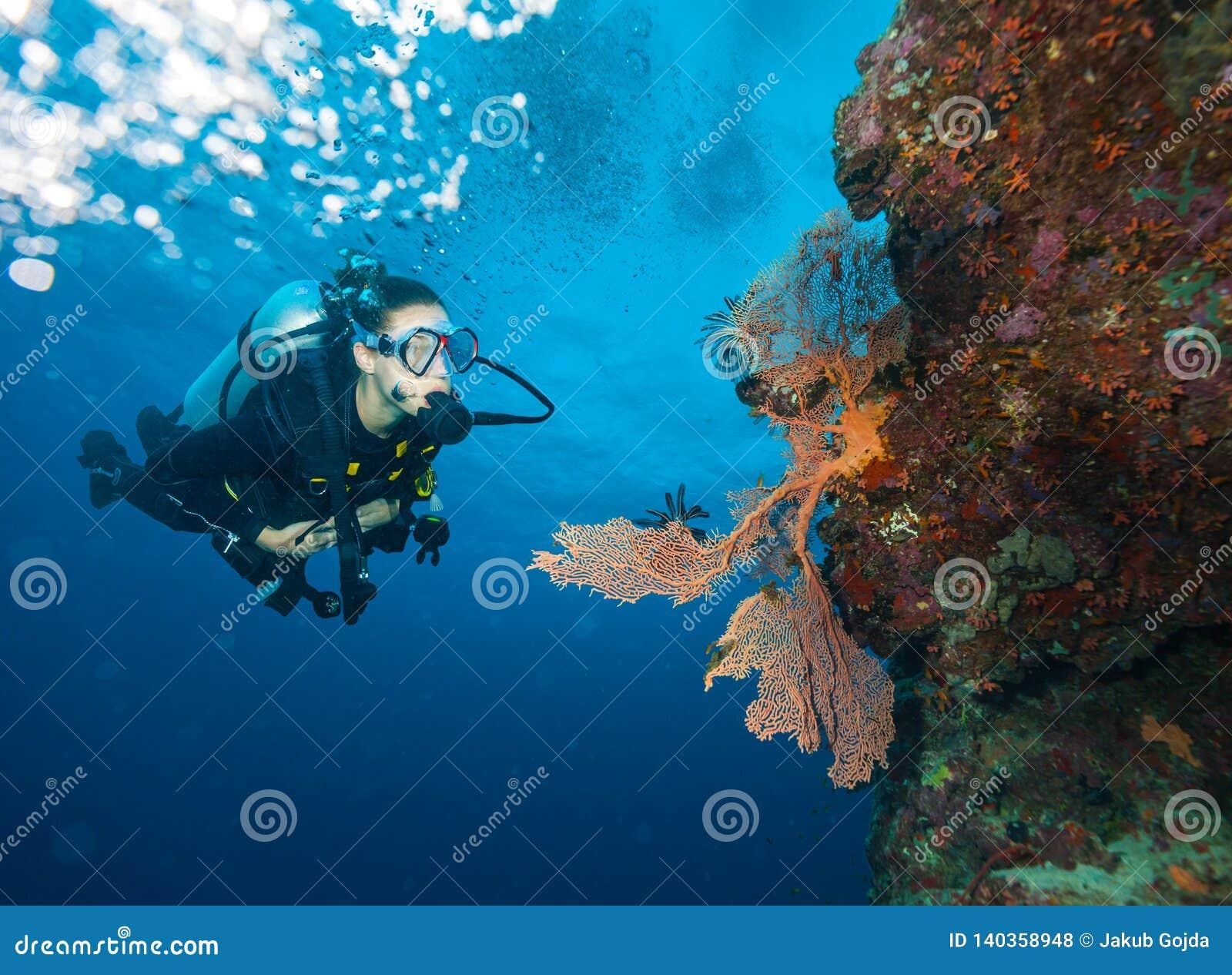 Recife de corais de exploração do mergulhador de mergulhador da jovem mulher