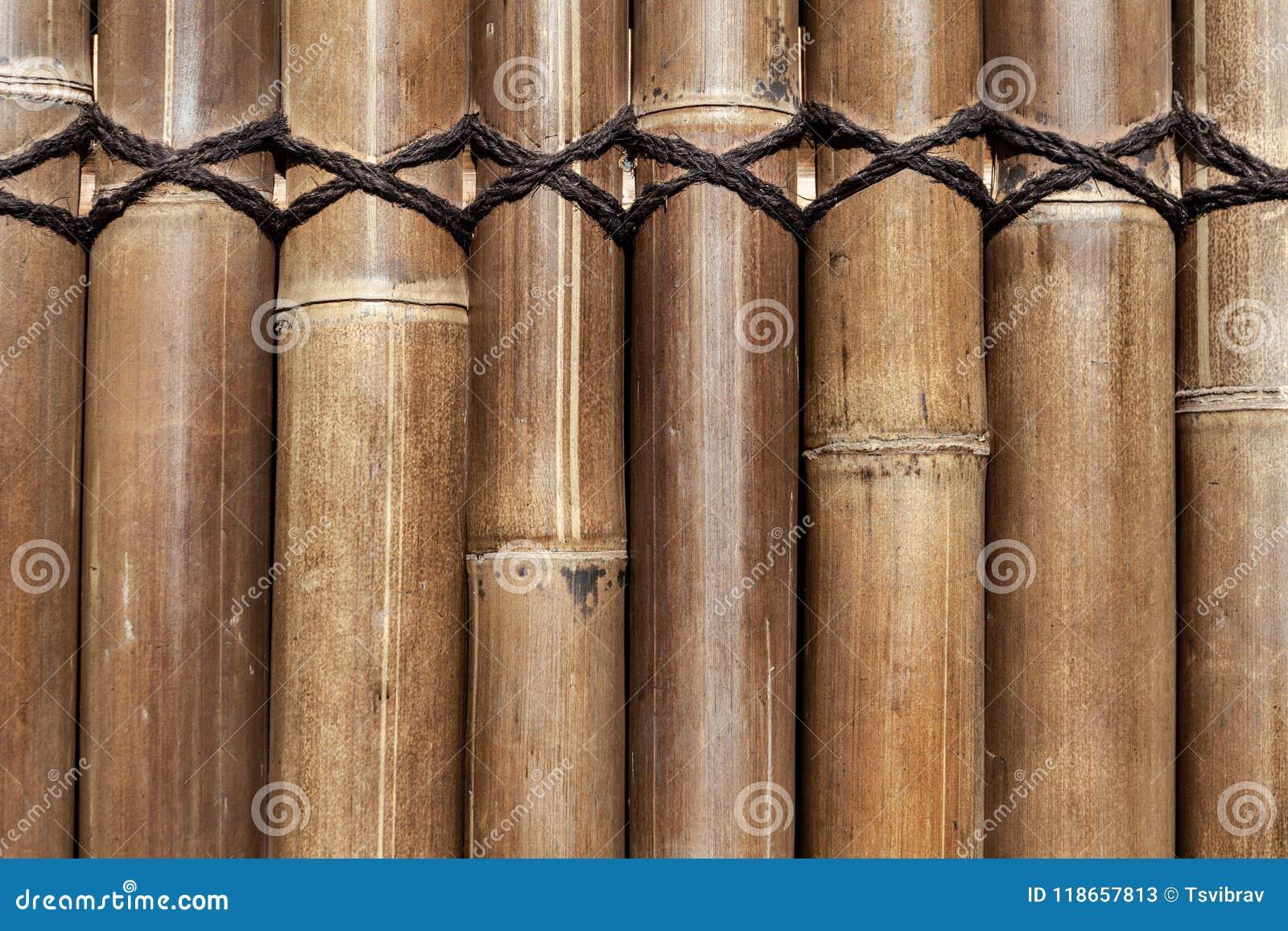 Recinto di bambù dei tronchi