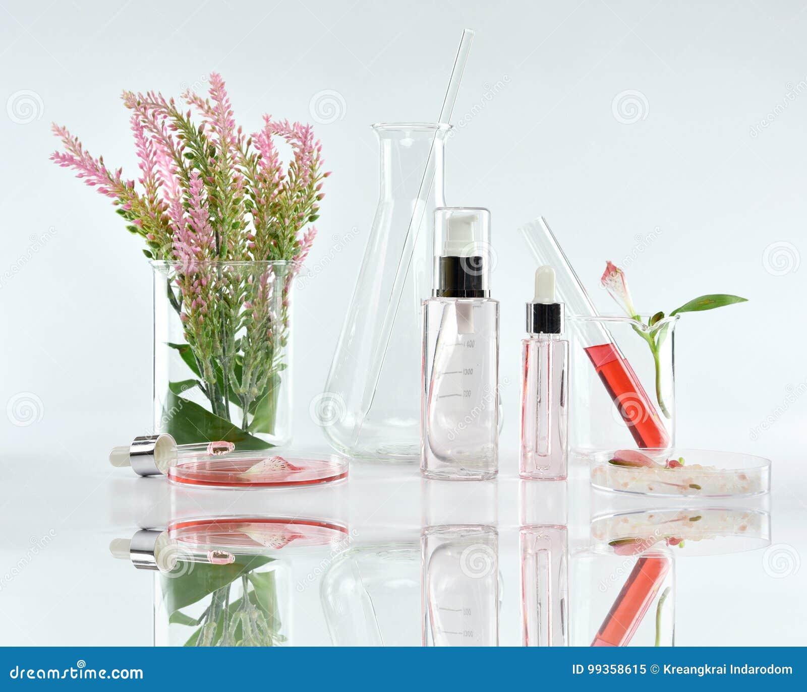Recipientes cosméticos da garrafa com as folhas ervais verdes e produtos vidreiros científicos, pacote vazio da etiqueta para o m