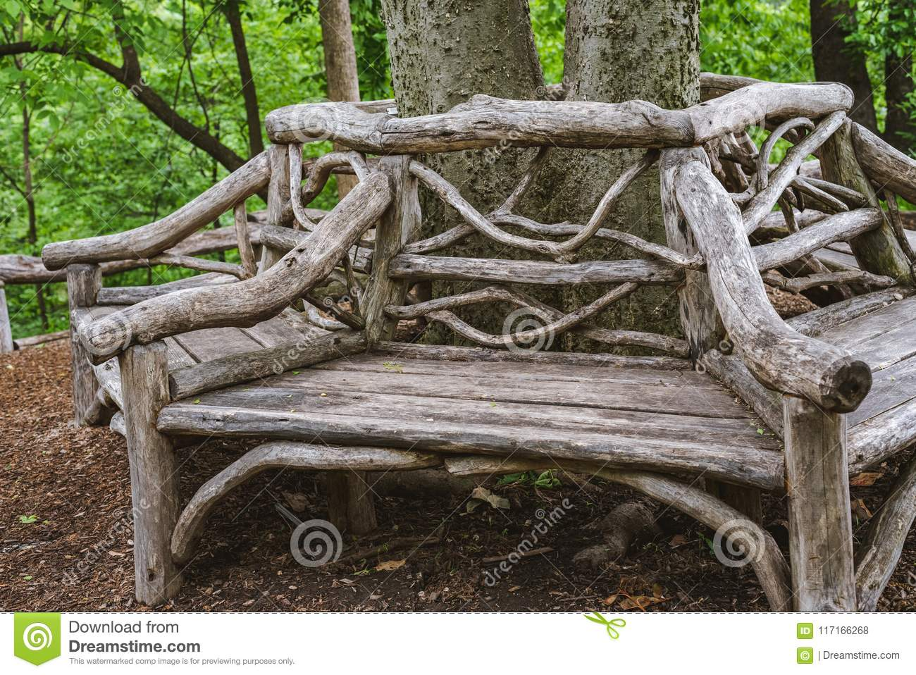Incredible Reclaimed Old Benches Wrapped Around Tree Stock Photo Dailytribune Chair Design For Home Dailytribuneorg