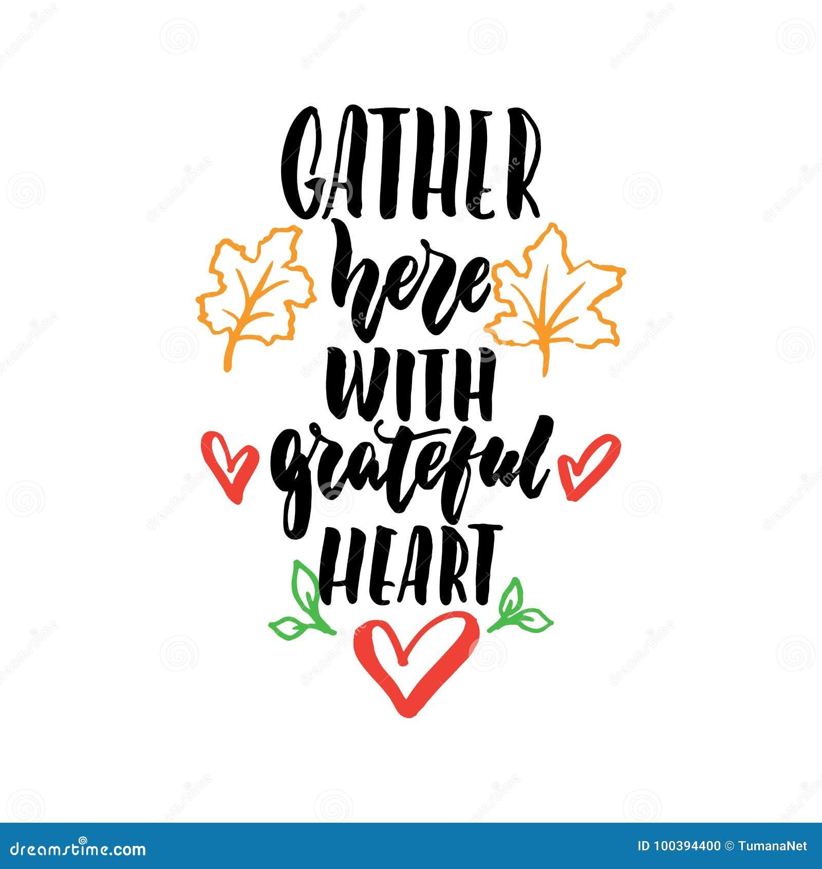 Recolhimento aqui com coração grato - citações tiradas mão da rotulação da ação de graças isoladas no fundo branco Escova do dive