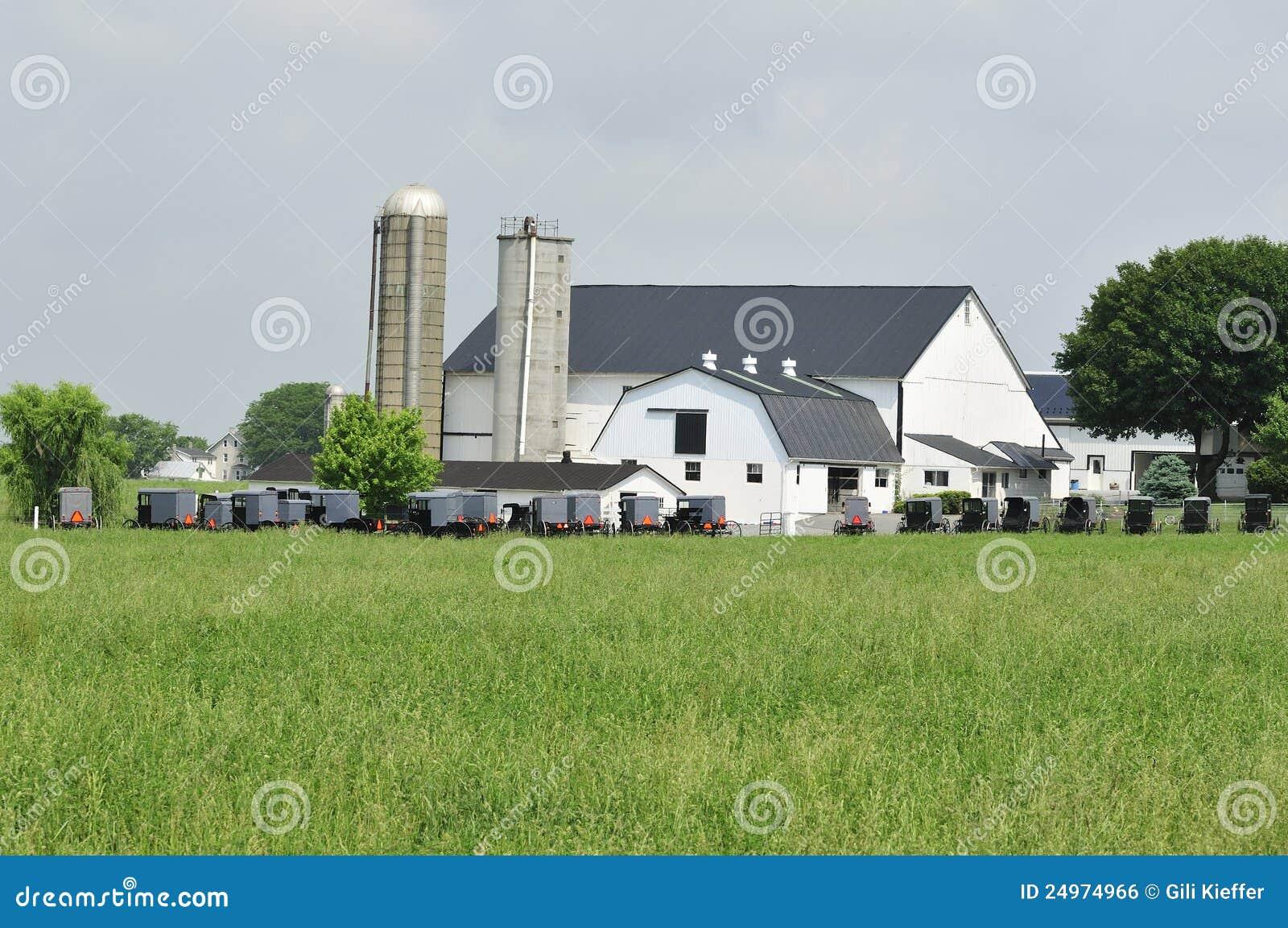 Recolhimento dos carrinhos de Amish
