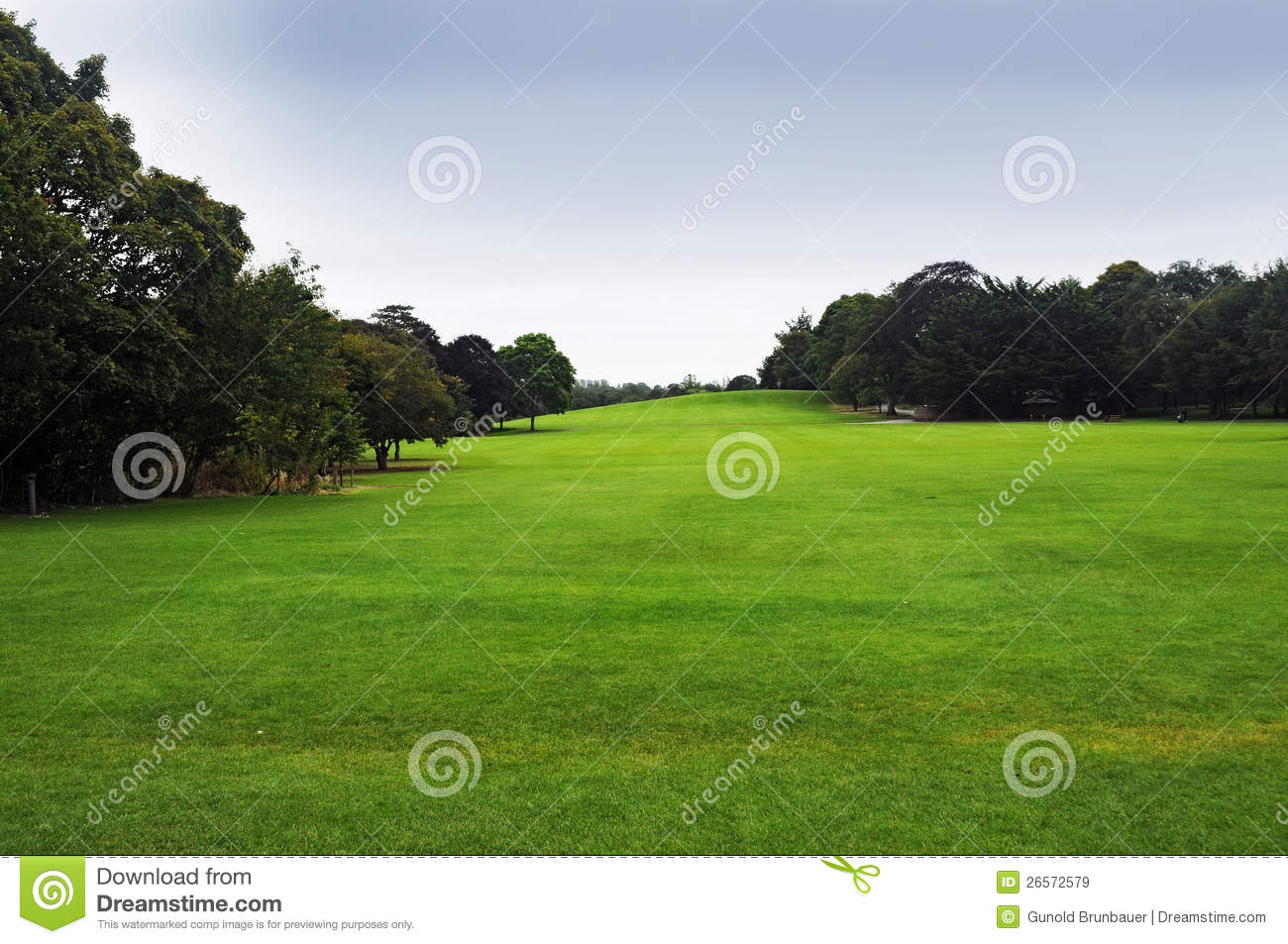 Download Recreation area stock image. Image of natural, grass - 26572579