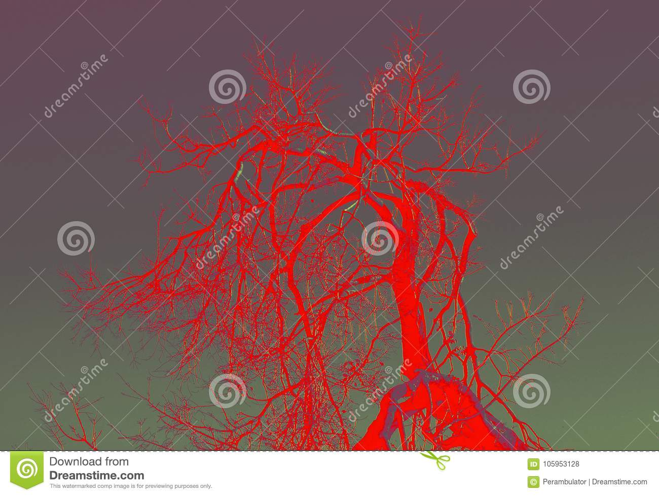Red Abstract Of Dead Tree Branches Stock Photo Image Of Colour