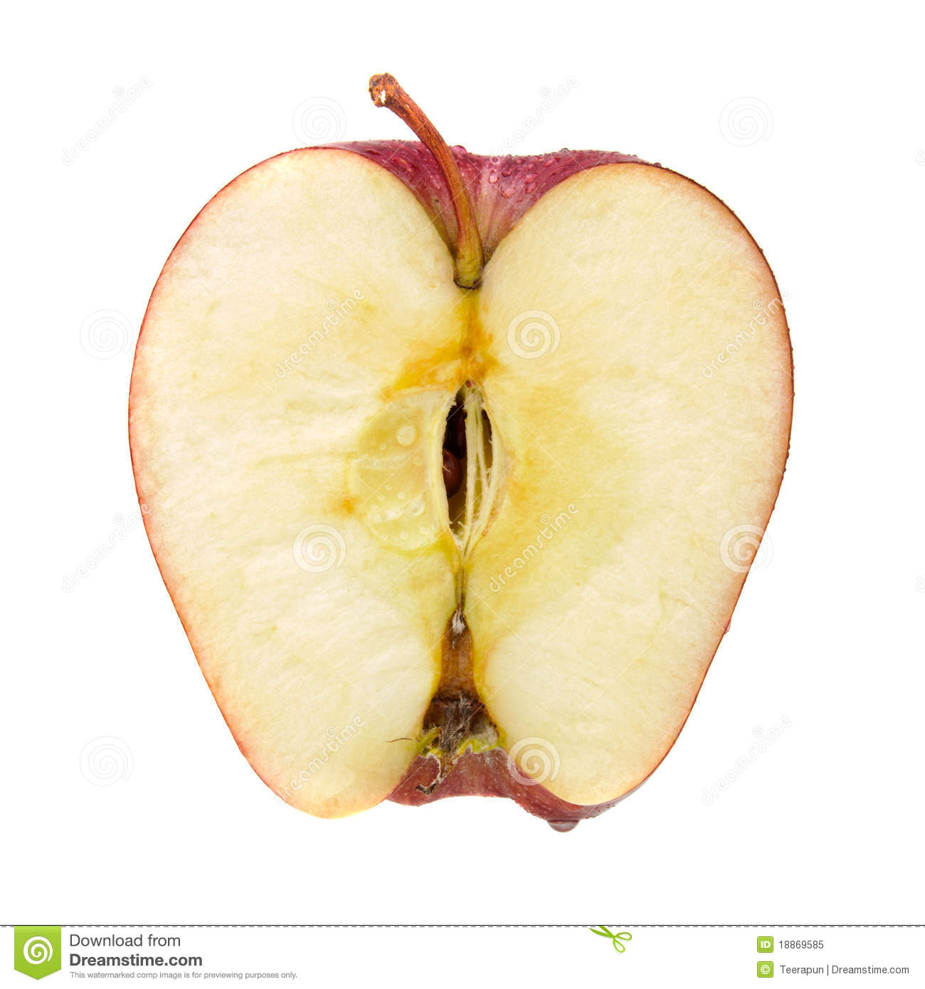 red apple cut in half royalty free stock photo image