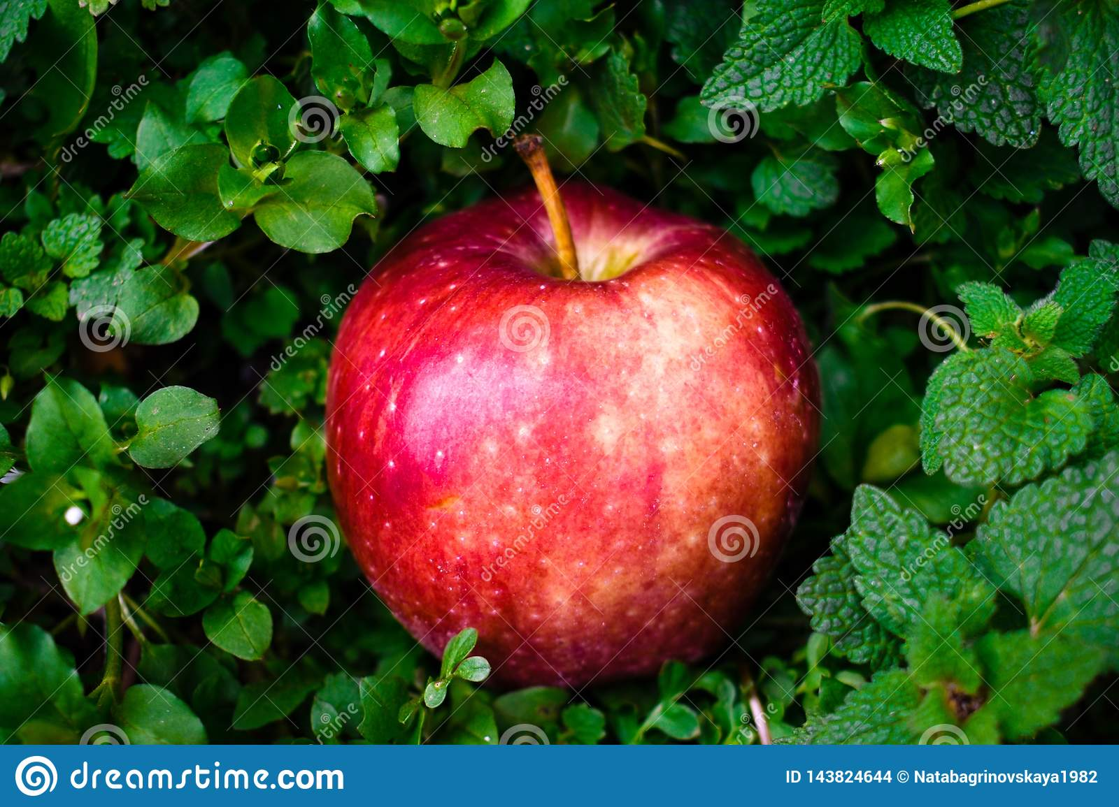 Red apple on green background isolated