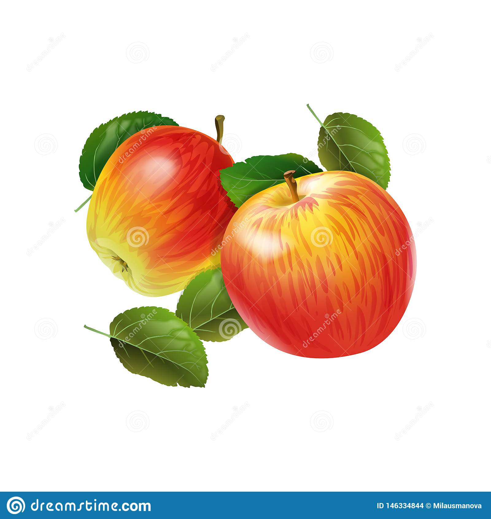 Red apple with green leaves on the white background