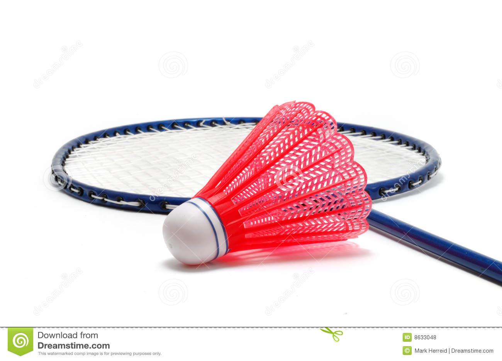 Badminton birdie and racket