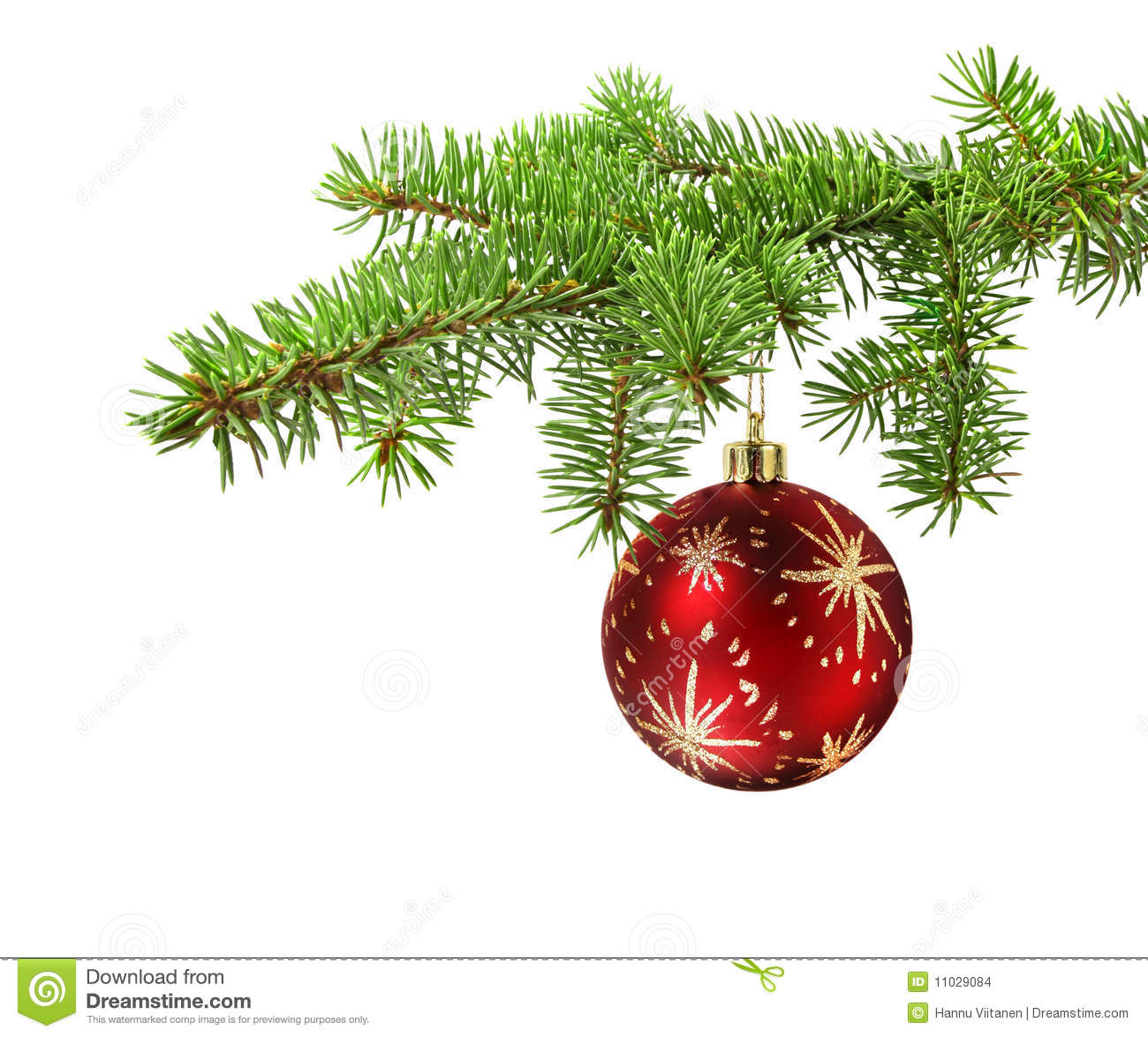 Red ball on christmas tree branch stock photo image of